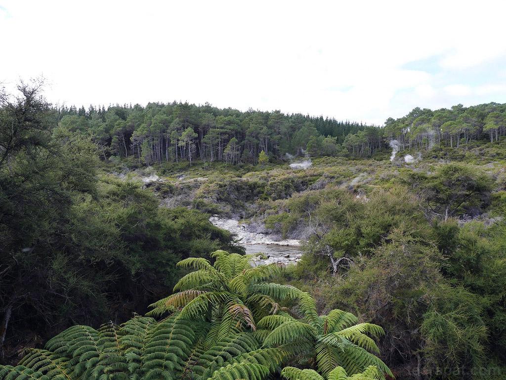 NZ14_0182
