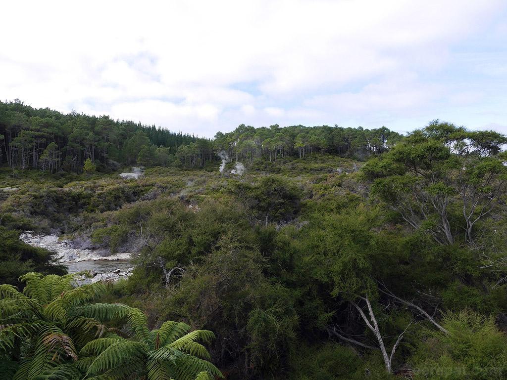 NZ14_0183