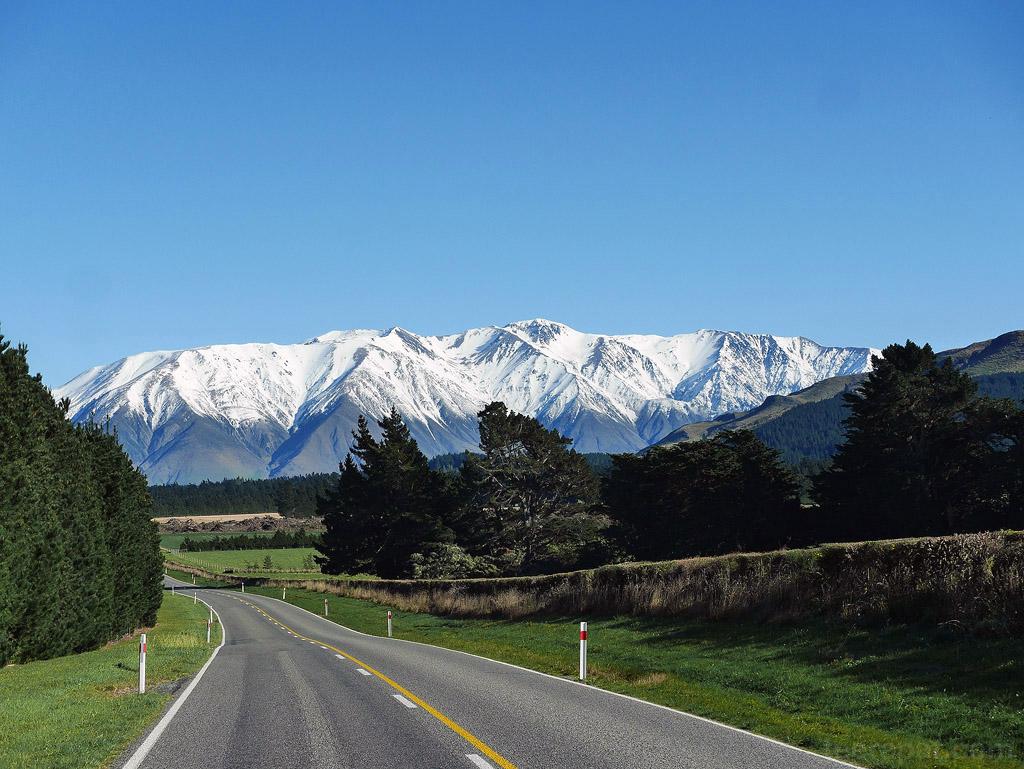 NZ14_0656