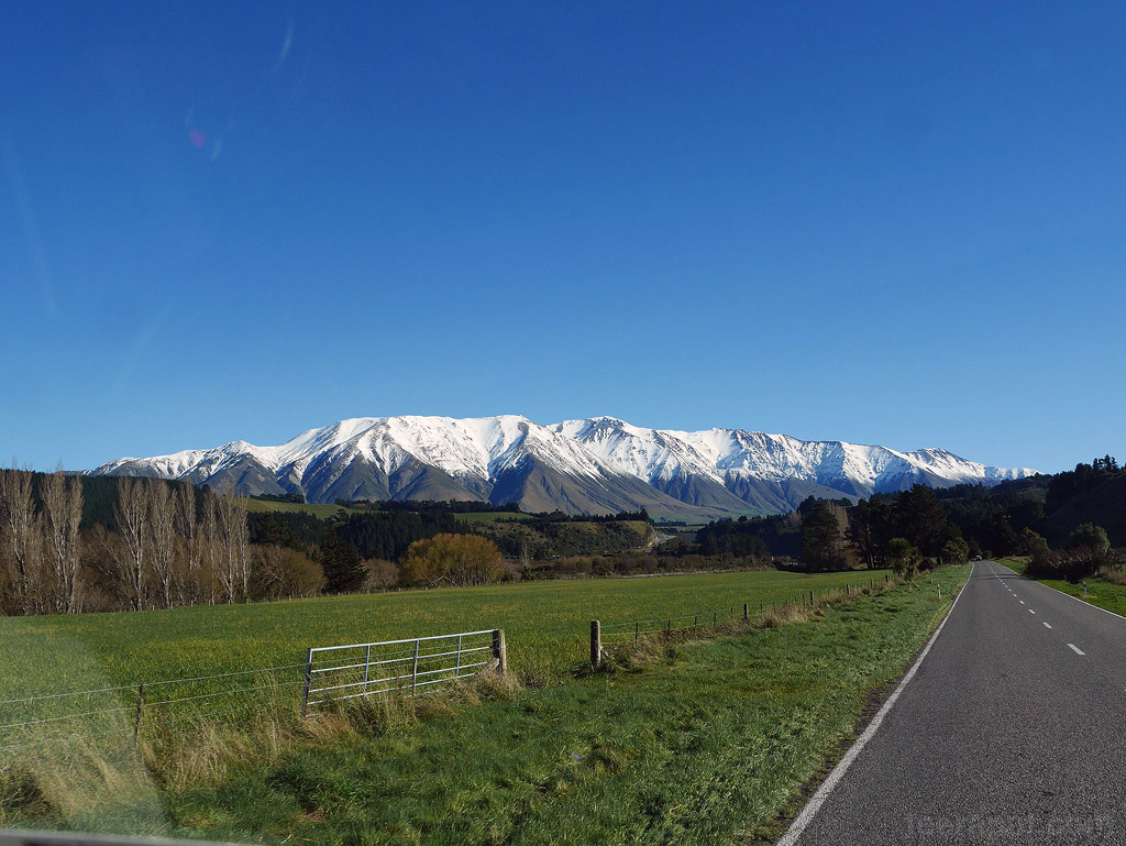 NZ14_0661