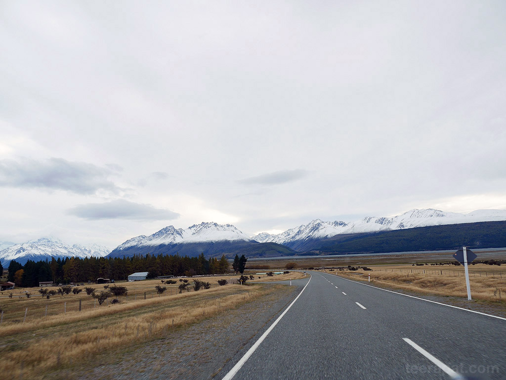 NZ14_0722