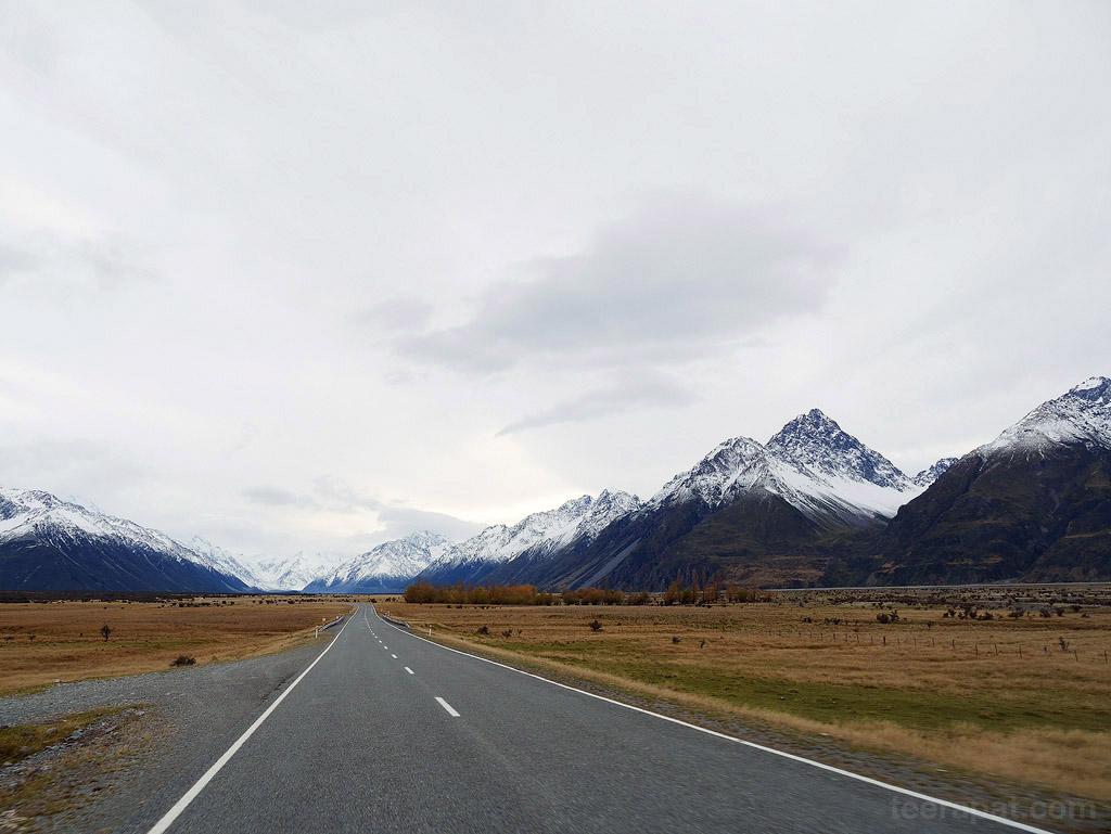 NZ14_0727