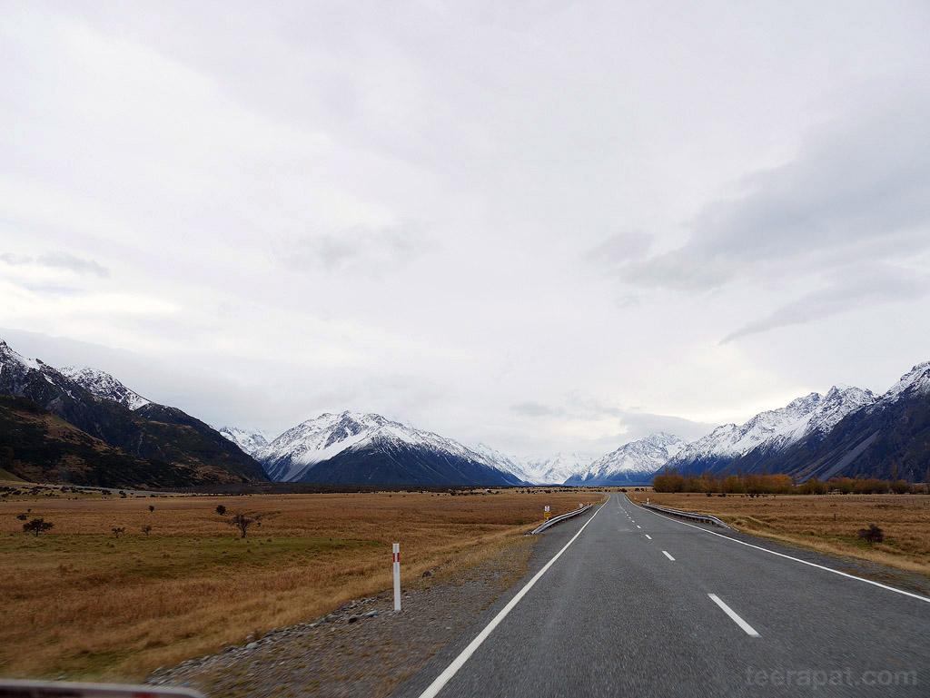 NZ14_0728