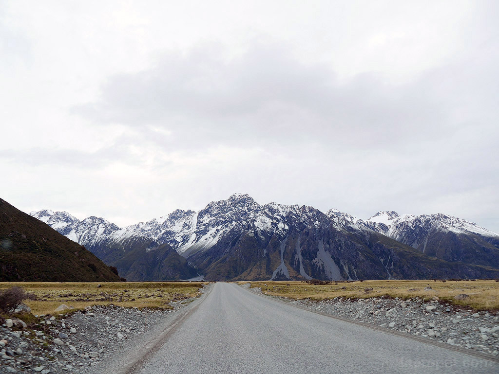 NZ14_0732