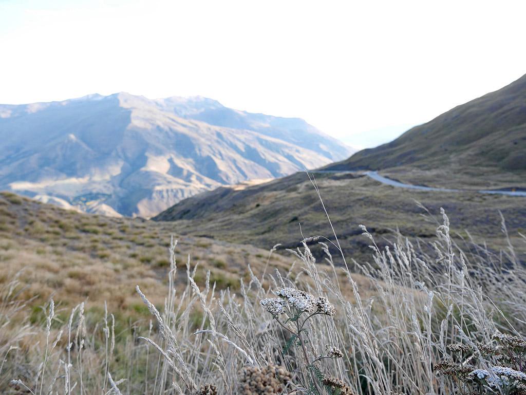 NZ14_0881